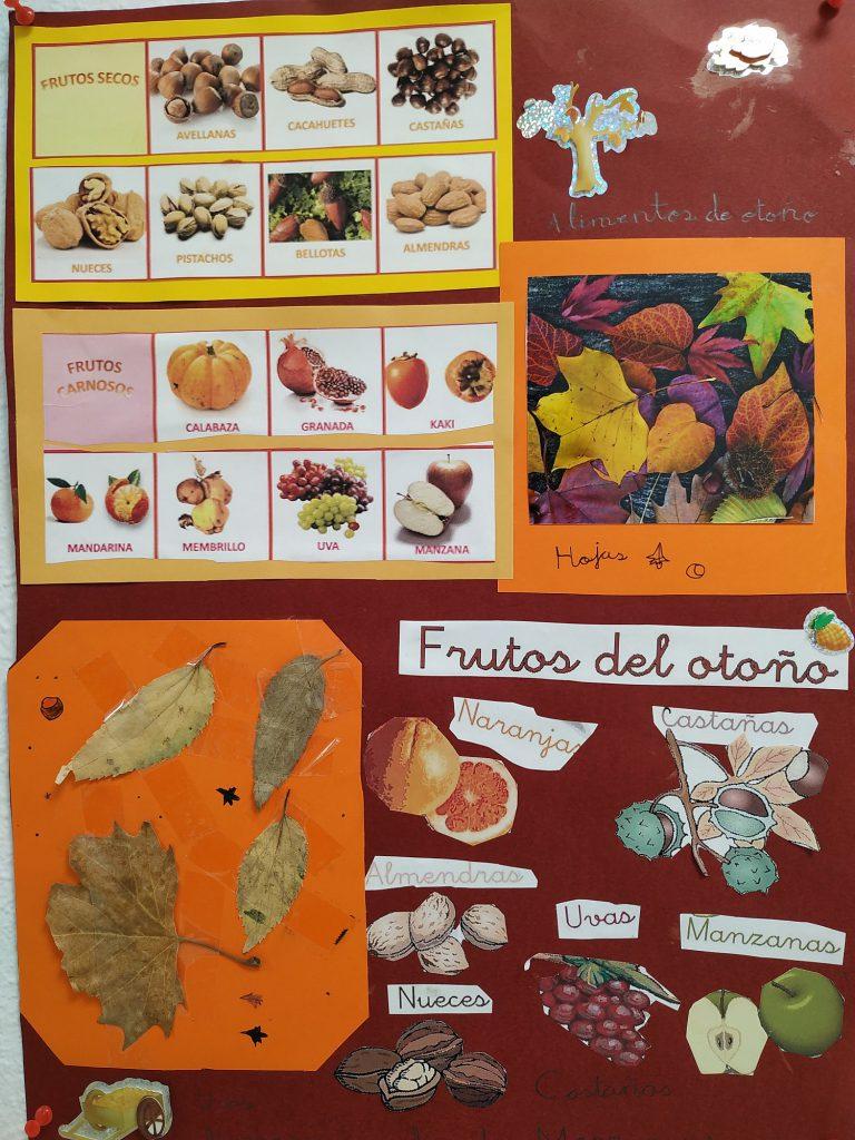 Proyecto Otoño de Primaria del Colegio Las Rosas de Madrid_5